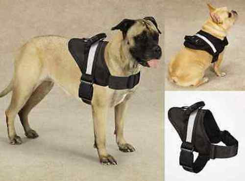 Guardian Gear EXCURSION HARNESS