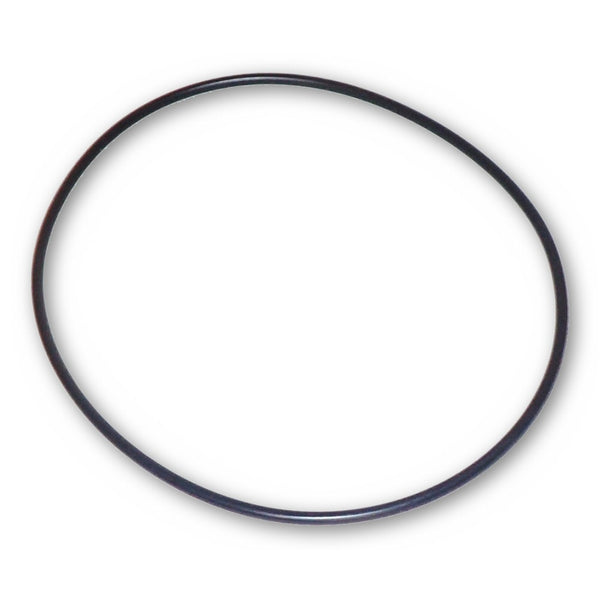 Model 71428 Replacement Internal O-Ring for Model 71406 and 71406T Pumps with Debris Traps