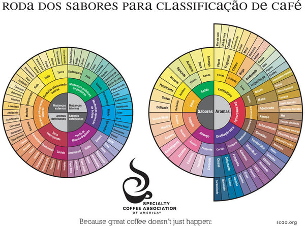 The Coffee Taster's Flavor Wheel (1995) - Portuguese (Digital Version)