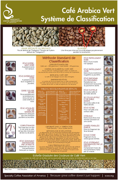 Green Arabica Coffee Classification System - French (Digital Version)
