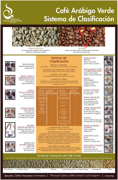 Green Arabica Coffee Classification System - Spanish (Digital Version)