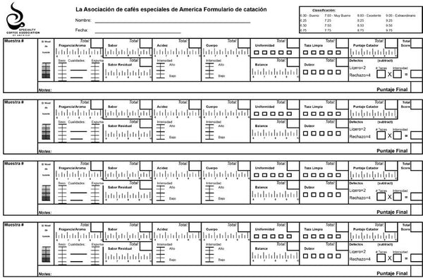 SCAA Official Cupping Form - Spanish