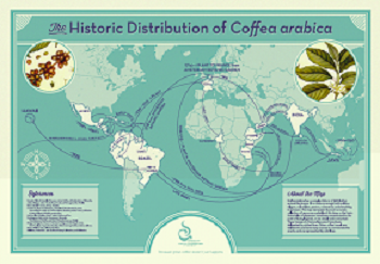 The Historic Distribution of Coffea Arabica