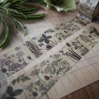 Discontinued Washi Tape - Poison Plants