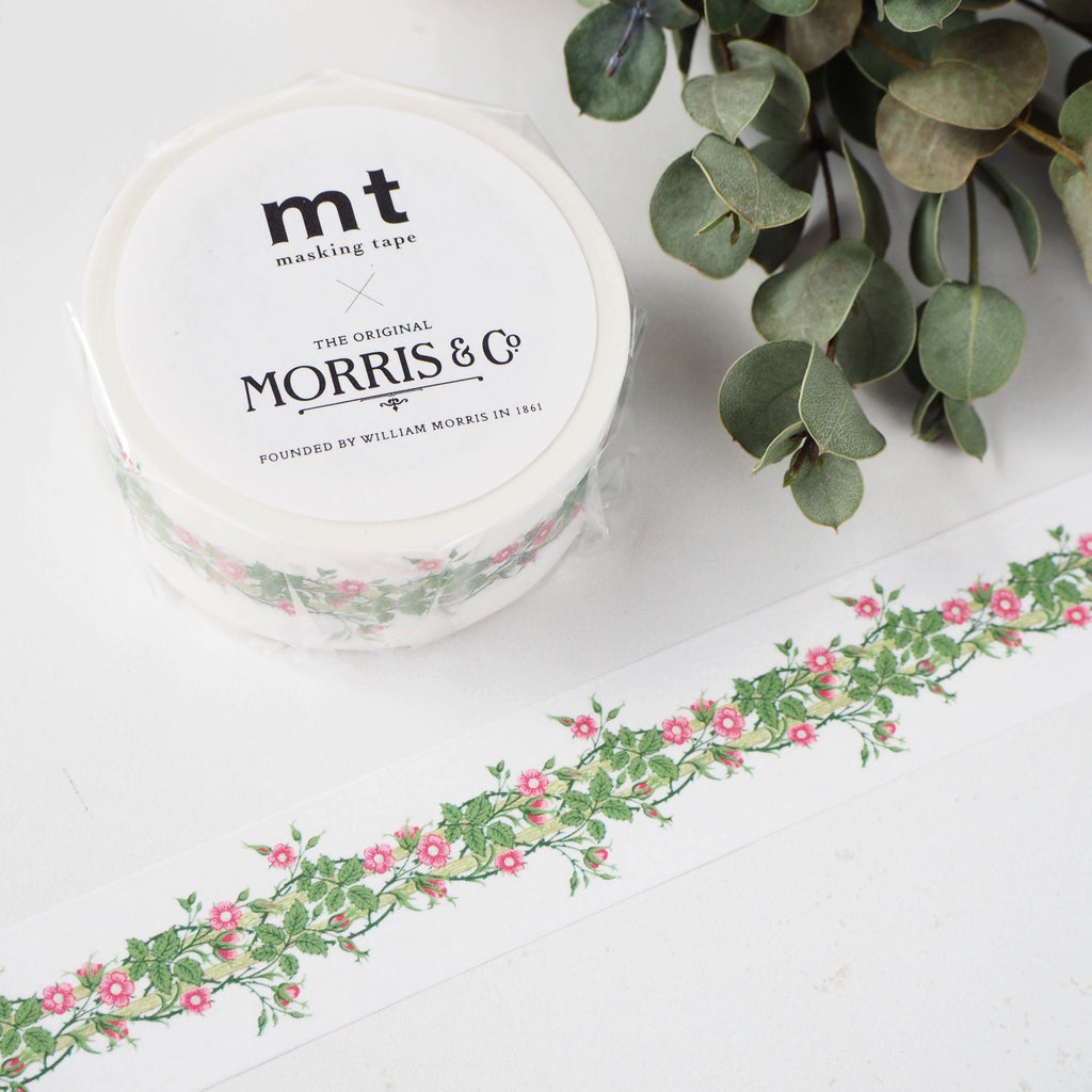 mt x William Morris Washi Tape - Rambler MTWILL11