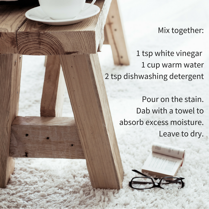Carpet Cleaning Recipe For Wee Accidents Looloo Toilet