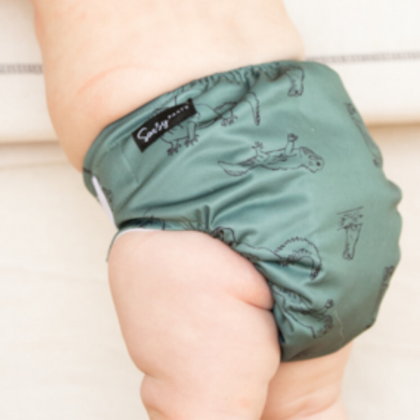 Sassy Pants Nappy with Velcro: Tuatara