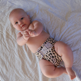 Cloth Nappy Sassy Pants with Velcro: Wild Thing