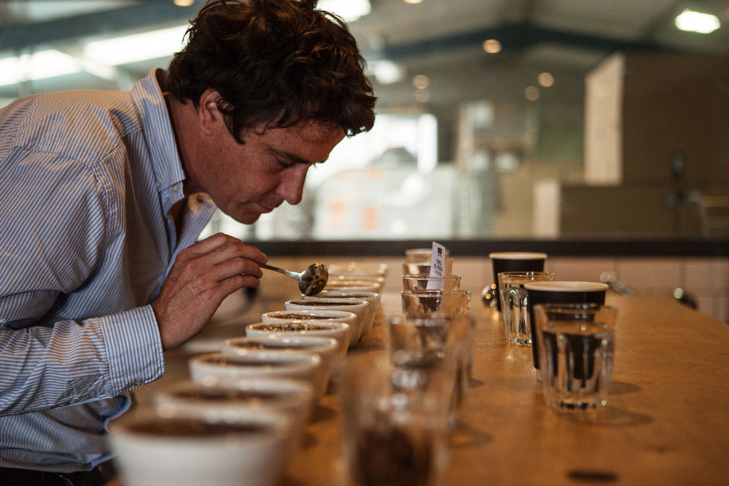 Tom Sobey cupping