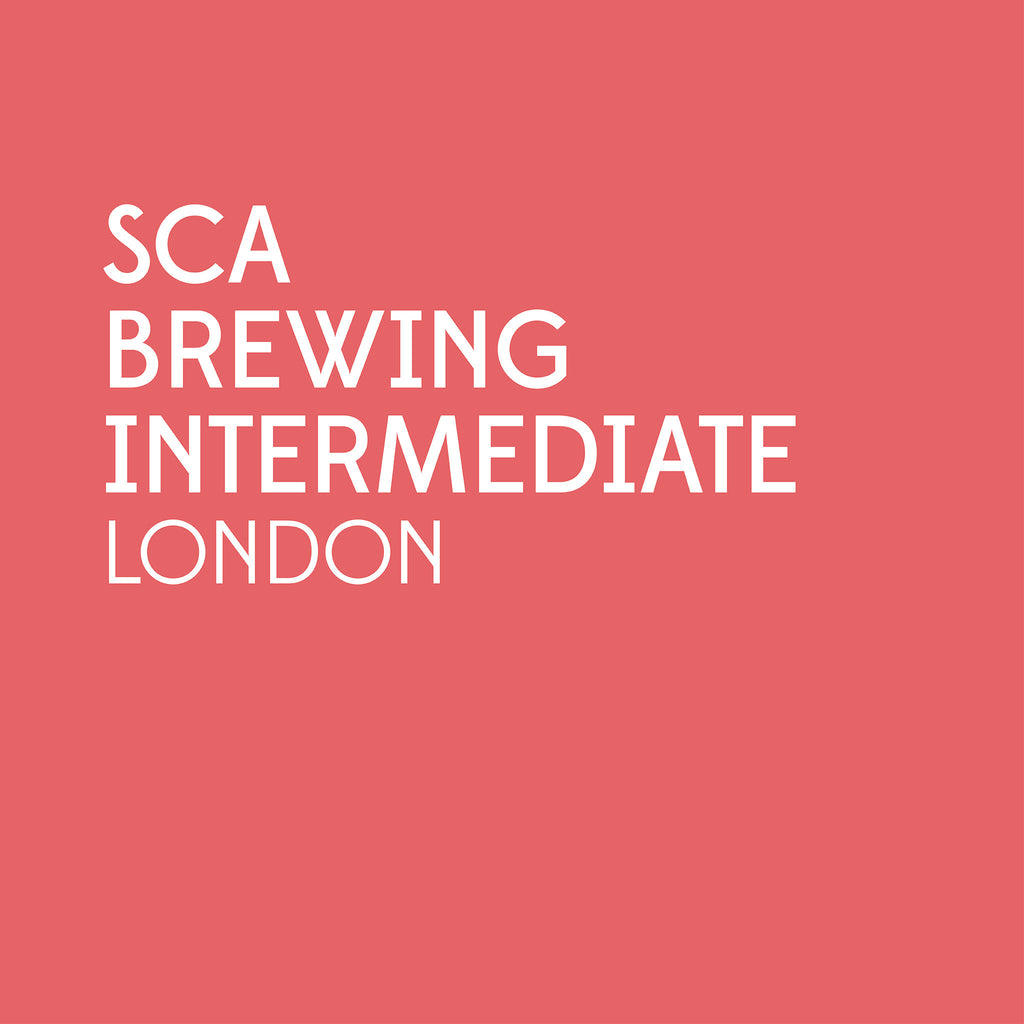 SCA Brewing Intermediate | London