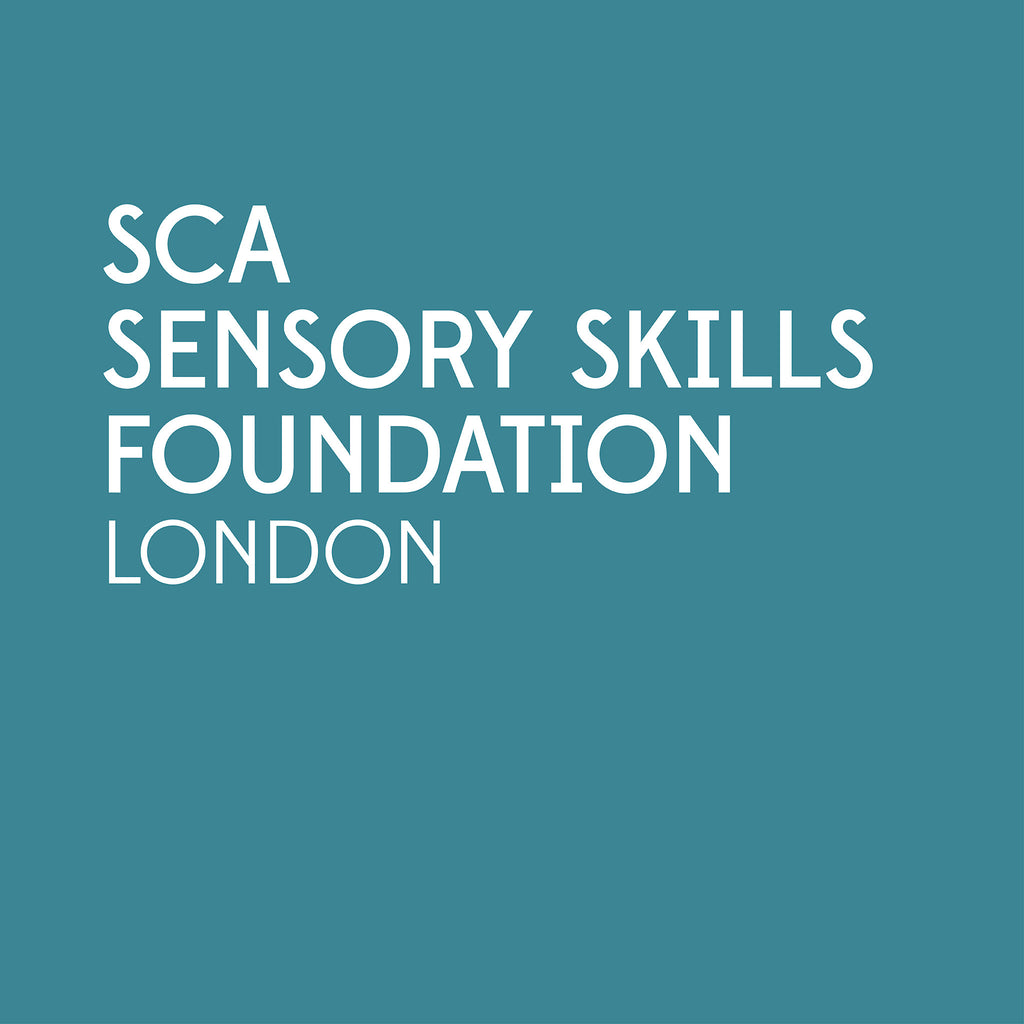 SCA Sensory Skills Foundation | London
