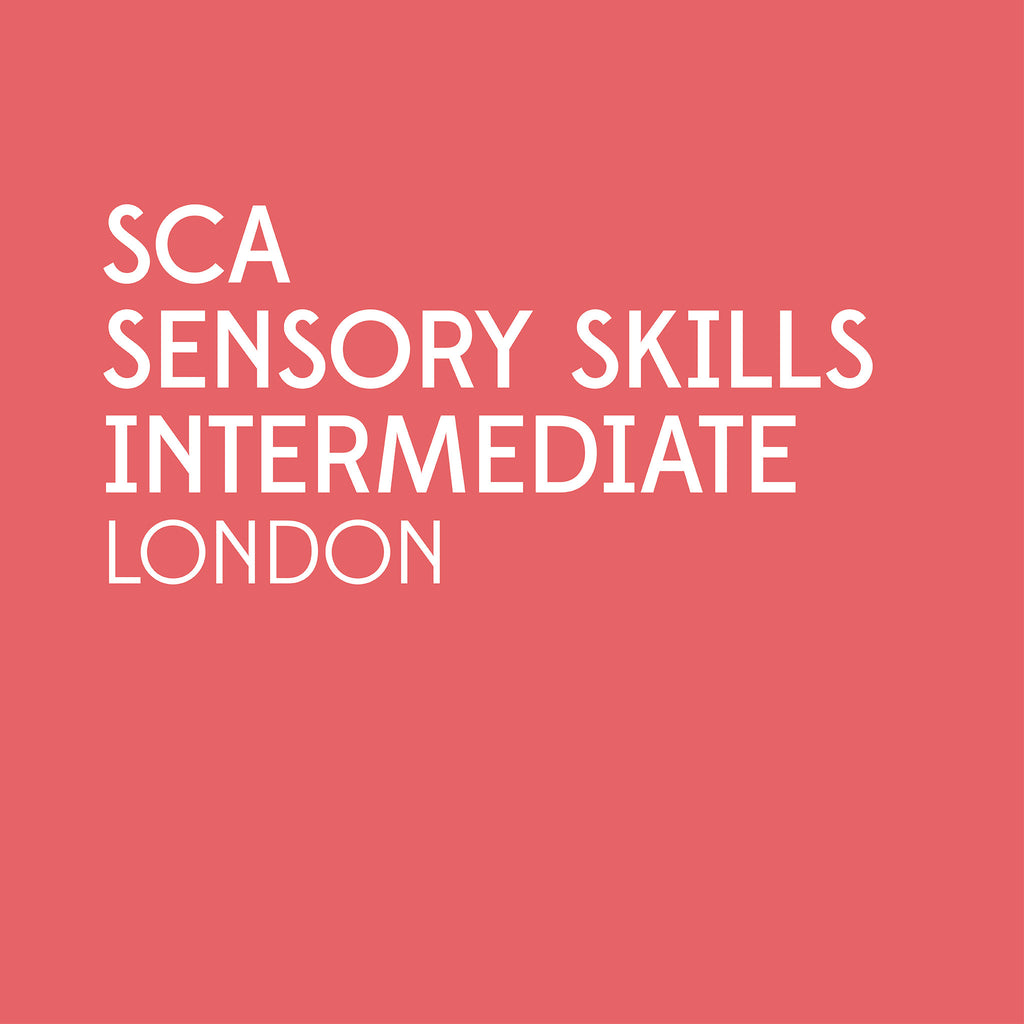 SCA Sensory Skills Intermediate | London