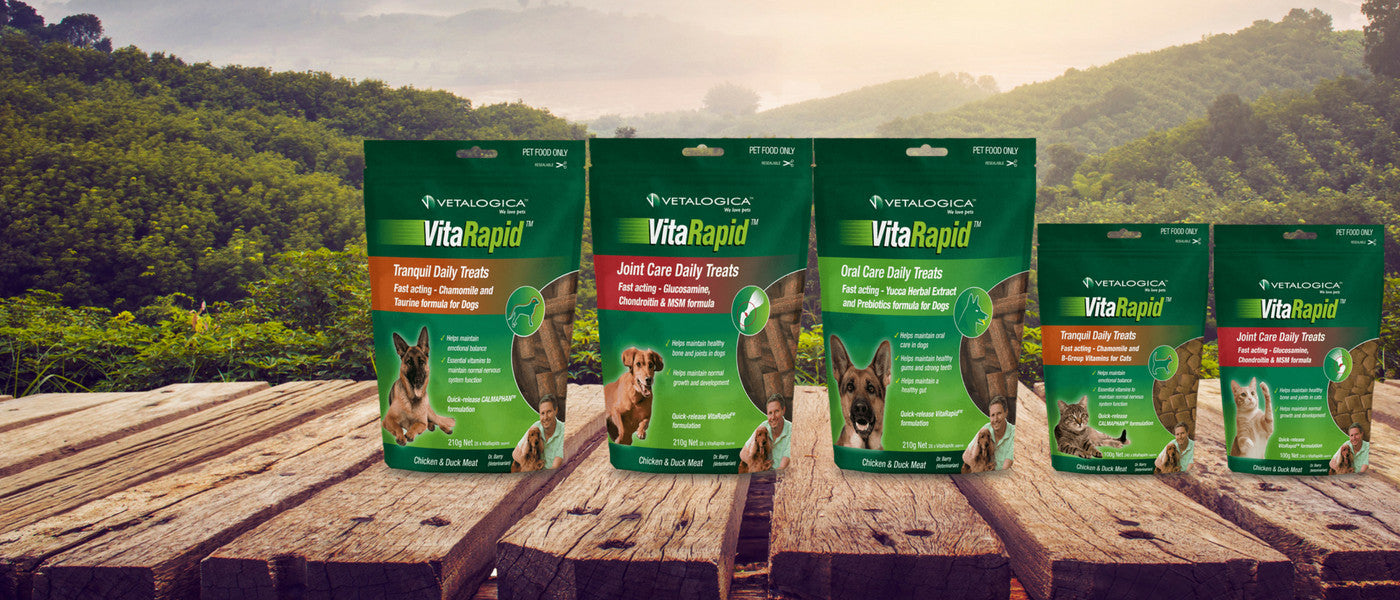 VitaRapid Supplementsfor dogs and cats