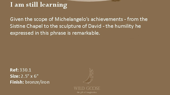 Wild Goose: I am still learning - Hibernian Gifts - 4
