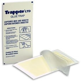 Mouse/insect Glue Boards  Trapper LTD