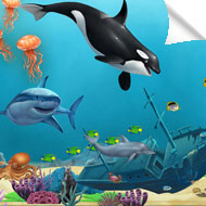 Ocean Wall Murals Decals