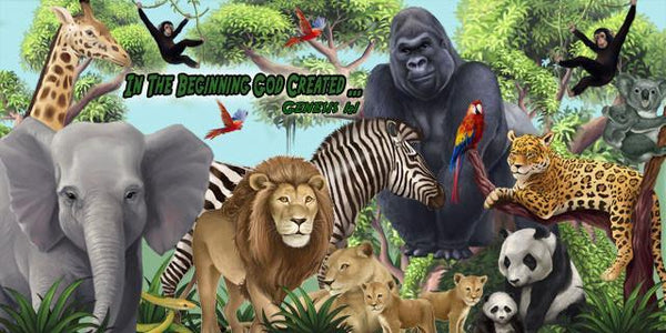 Animal Murals Wild Zoo Animal Wall Murals For Kids Room Decor