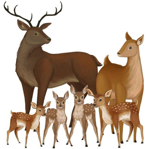 Deer Family Wall Mural - Kids Room Mural Wall Decals