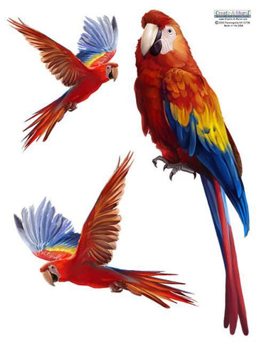 Parrot Wall Sticker - Create-A-Mural
