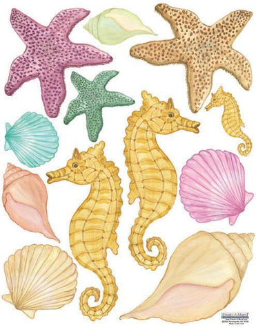 Seashell Wall Decals - Kids Room Mural Wall Decals