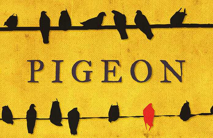 Structo Magazine Review of 'Pigeon'