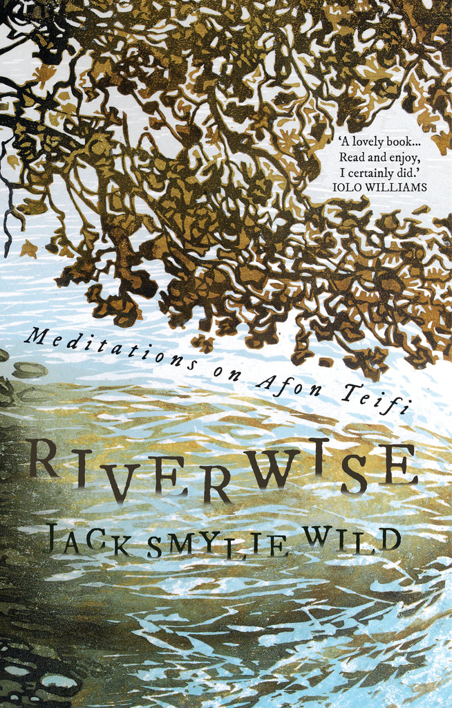 """... a fine, absorbing and wonderfully attentive book."" Nation.Cymru reviews Riverwise"