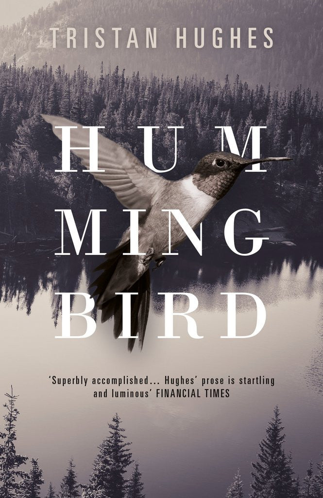 Book Launch and Reviews: Tristan Hughes' new novel 'Hummingbird'