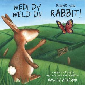 Found You Rabbit/ Wedi Dy Weld Di