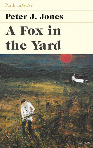 A Fox in the Yard