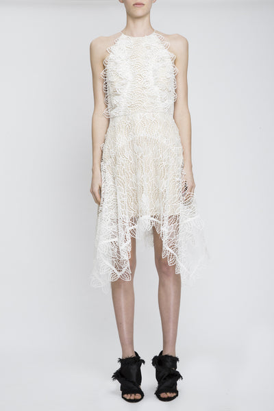 Burton Lace Dress