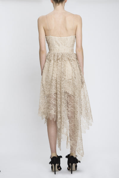 Elan Lace Dress