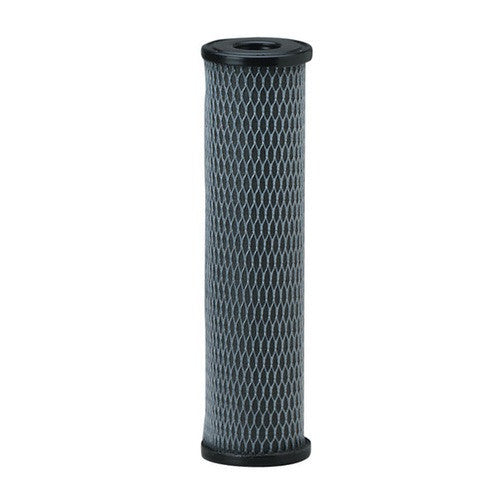 Pentek C1 Carbon Filter Cartridge (155002-43)