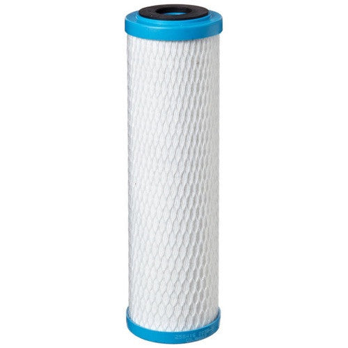 Pentek ChlorPlus 10 Carbon Filter Cartridge (255416-43)