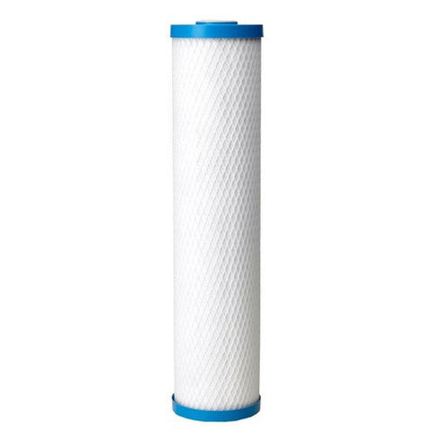 Pentek ChlorPlus 20BB Carbon Filter Cartridge (355753-43)