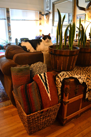 Artifact Home Tour with Cat Farotte. Woven textiles, skulls, Mexican blankets