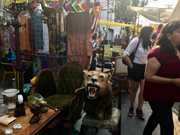 Lion's Head Taxidermy at Tepito Market Mexico City