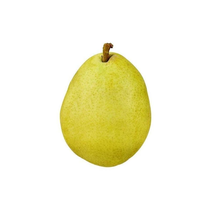 Anjou Pear Large