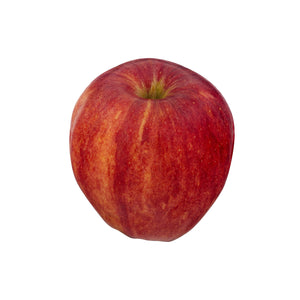 Gala Apple - 1 ct.