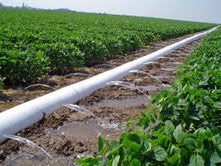 "9"" x 7 mil x 1320' polypipe lay-flat irrigation tubing"