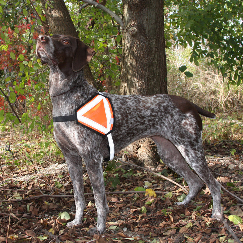 Reflective Safety Vest - Medium Size Breeds