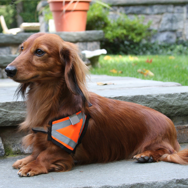 Reflective Safety Vest - Small Size Breeds