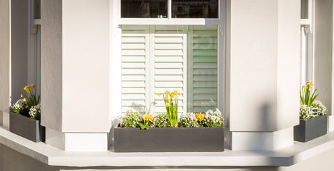 Bay and Box window box