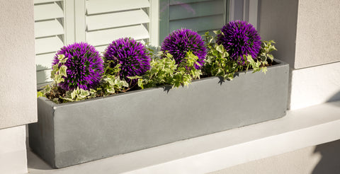Bay and Box large window box