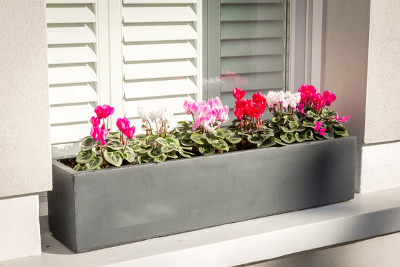 Large window box - Bay and Box