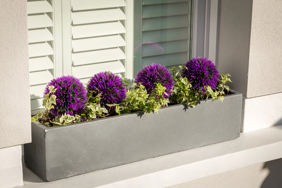 Parisian Grey - Window Boxes