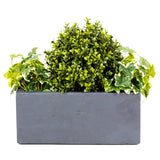 Artificial Buxus Balls planted in window box - Bay and Box