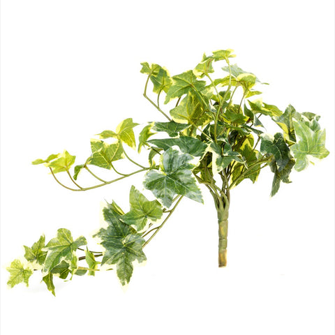 Artificial Variegated Ivy - Bay and Box