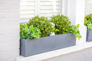 Beautiful Buxus - artificial window box