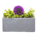 Small window box in Parisian Grey with a purple flower - Bay and Box
