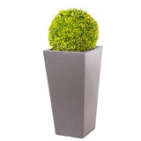 Society Vase in Amalfi Black planted with Buxus Ball - Bay and Box